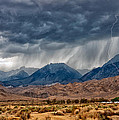 Lightning Strike by Cat Connor