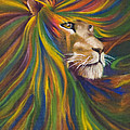 Lion by Kd Neeley