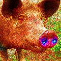 Little Miss Piggy - 2013-0108 by Wingsdomain Art and Photography