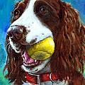 Liver English Springer Spaniel With Tennis Ball by Dottie Dracos