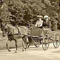 Lone Four Wheel Cart by Wayne Sheeler