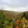 Looking Downstream At Blackwater River Gorge In Fall by Dan Friend