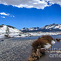 Looking Up The Salmon River by Robert Bales