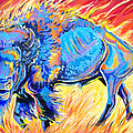 Lord Of The Prairie by Jenn Cunningham