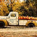 Loukonen Farms Pumpkin Truck by Catherine Fenner
