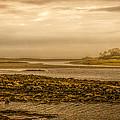 Low Tide Cape Porpoise Maine by Bob Orsillo