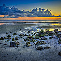 Low Tide on the Bay Print by Marvin Spates