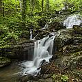 Lower Amicalola Falls by Debra and Dave Vanderlaan