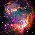 Magellanic Cloud 2 by Jennifer Rondinelli Reilly - Fine Art Photography