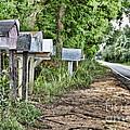Mail Route by Scott Pellegrin