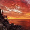 Maine's Bold Coast by Chad Tracy