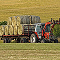 Make Hay When Sun Shines by Paul Scoullar