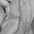Male Nude 2 by Stefano Campitelli