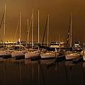 Marina At Night by Jenny Hudson