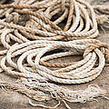 Marine Ropes Beige And Brown Colors by Matthias Hauser