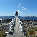 Marshall Point Lighthouse From Shoreline by Joseph Rennie