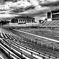Martin Stadium On The Washington State University Campus by David Patterson