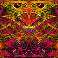 Masquerade 20140128 by Wingsdomain Art and Photography