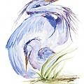 Maternal Heron Print by Eve McCauley