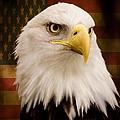 May Your Heart Soar Like An Eagle by Jordan Blackstone