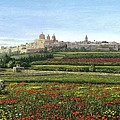 Mdina Poppies Malta by Richard Harpum