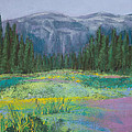 Meadow In The Cascades by David Patterson