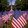 Memorial Day Flag Garden by Rona Black