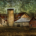 Mennonite Farm In Tennessee Usa by Kathy Clark