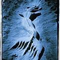 Mermaid by Tony V Martin