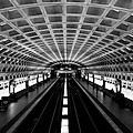 Metro by Greg Fortier