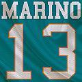 Miami Dolphins Dan Marino by Joe Hamilton