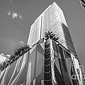 Miami Downtown Buildings - Miami - Florida - Black and White Print by Ian Monk