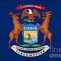 Michigan State Flag by Pixel Chimp