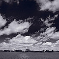 Midwest Corn Field Bw by Steve Gadomski