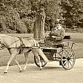 Miniature Two Wheel Cart by Wayne Sheeler