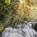 Misty Falls at Coker Creek Print by Debra and Dave Vanderlaan
