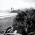 Mondos Shoreline by Ron Regalado