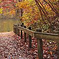 Monet's Trail by Debra and Dave Vanderlaan