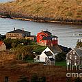 Monhegan Island Maine 142 by Cindy McIntyre