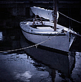 Moonlight Sail by Amy Weiss