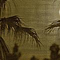 Moons Glow by Gilbert Artiaga
