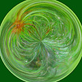 Morphed Art Globe 5 by Rhonda Barrett