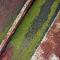 Moss Green-raw Steel by Tom Druin