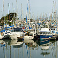 Moss Landing Boat Harbor by Artist and Photographer Laura Wrede