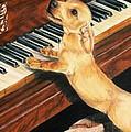 Mozart's Apprentice by Barbara Keith