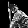 Mr. Cub by David Bearden