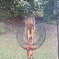 Mr. Squirrel Eating Apple Upside Down