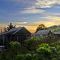 Mt Leconte Before Dawn by Debra and Dave Vanderlaan