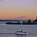 Mt. Rainier Afterglow by Adam Romanowicz