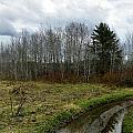 Mud Season by Gene Cyr